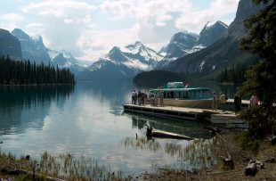 Maligne lake nature tour - JV