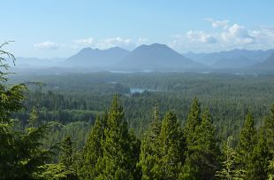 View over Pacific Rim NP - HER